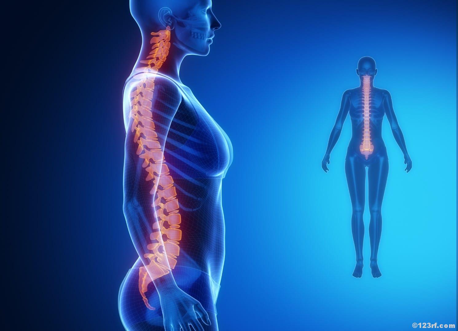 Wirbelsäule Rückenbeschwerden Checkliste Beckenboden