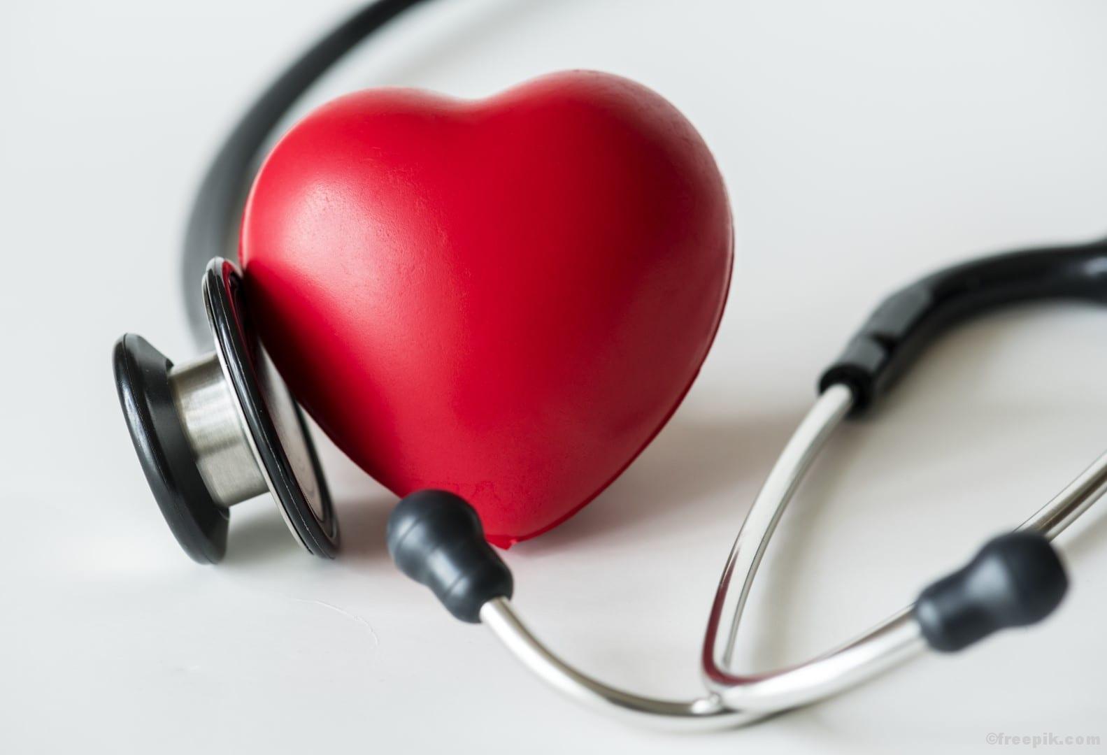 Ausdauertraining Ausdauer Cardio Herzkreislauftraining Herzkreislauf