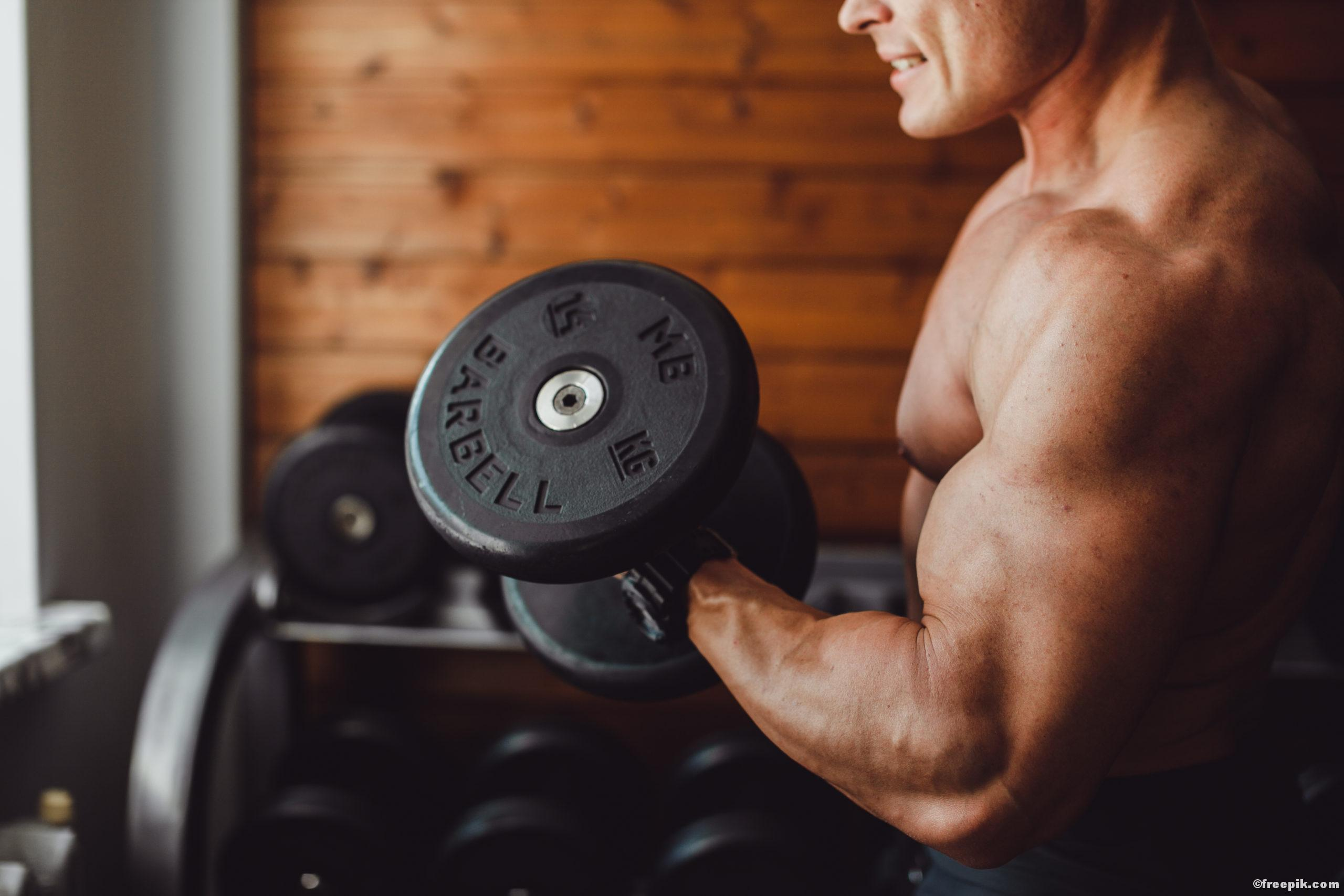 Wusstest du schon, dass der Mensch insgesamt 656 Muskeln besitzt?