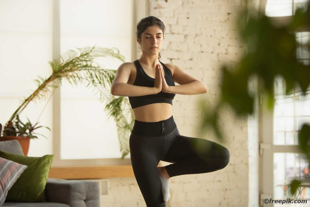 Online-Fitness-Kurse Live-Workout Online-Training Homeworkout
